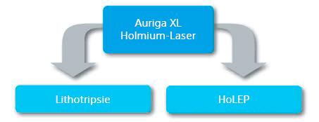 Auriga XL