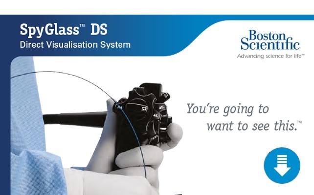 SpyGlass DS Brochure