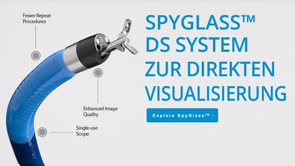 Spyglass™ DS System zur direkten Visualisierung