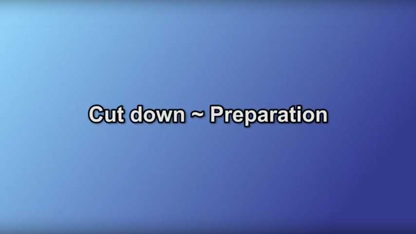 Cut down~Preparation