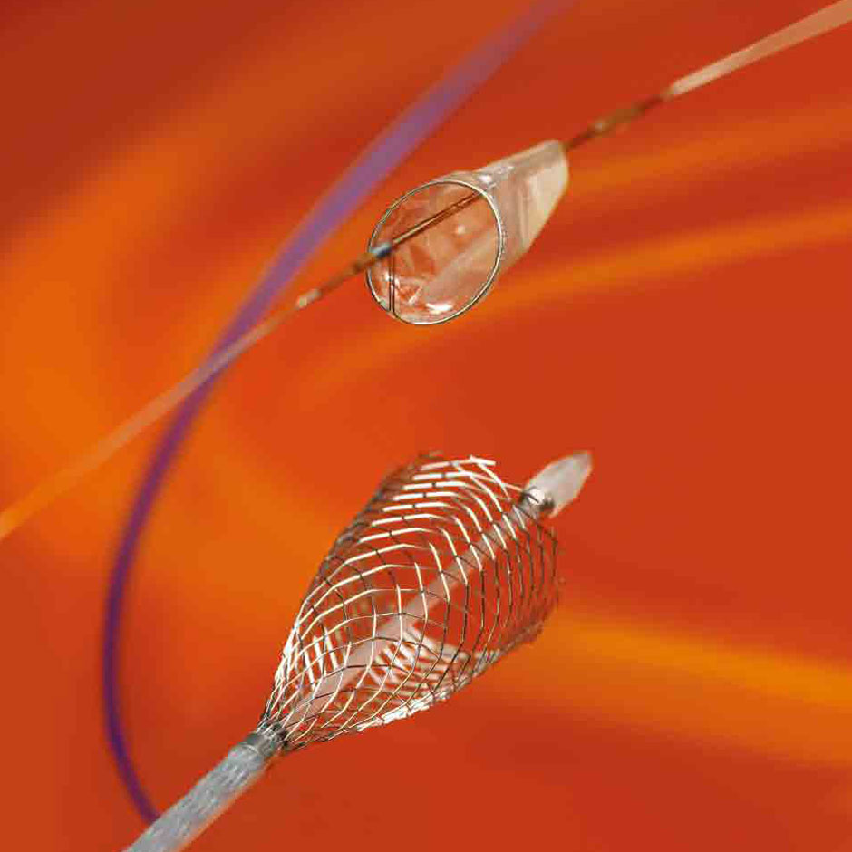 Carotid Solutions-FilterWireEZ™ & Carotid Wallstent™ Monorail™