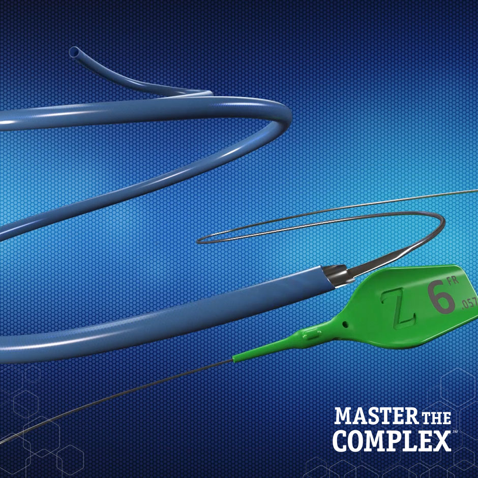 GUIDEZILLA II Guide Extension Catheter Product Animation