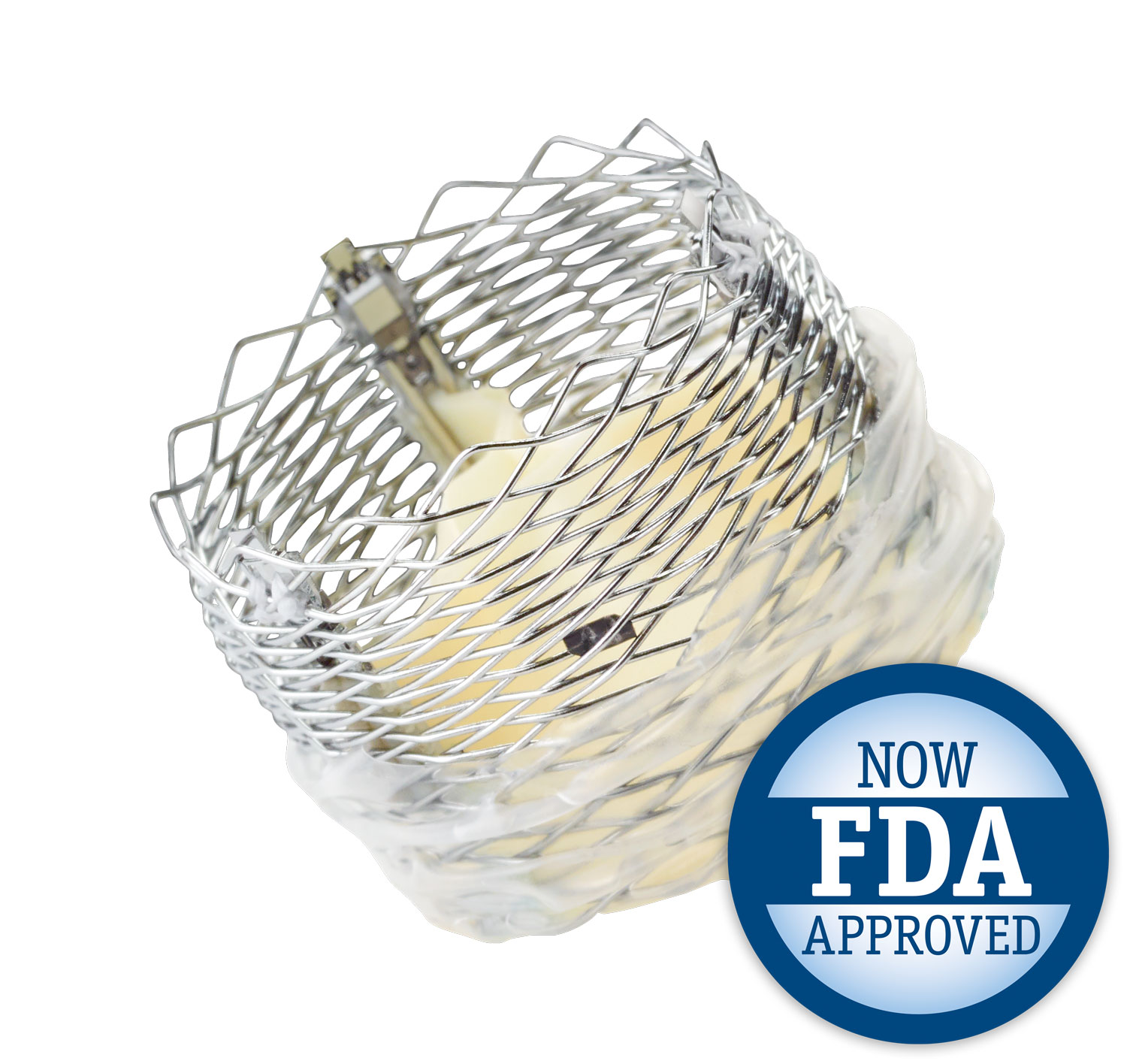 LOTUS Edge has a braided nitinol frame and Adaptive Seal™ Technology that conform to patients' anatomies, virtually eliminating paravalvular leak.