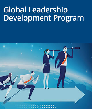 Global Leadership Development Program