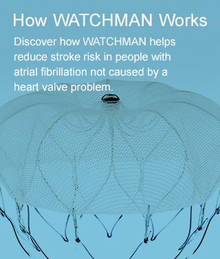 Discover how WATCHMAN helps reduce stroke risk in people with atrial fibrillation not caused by a heart valve problem.