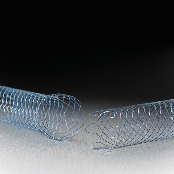 WallFlex™ Colonic Stents