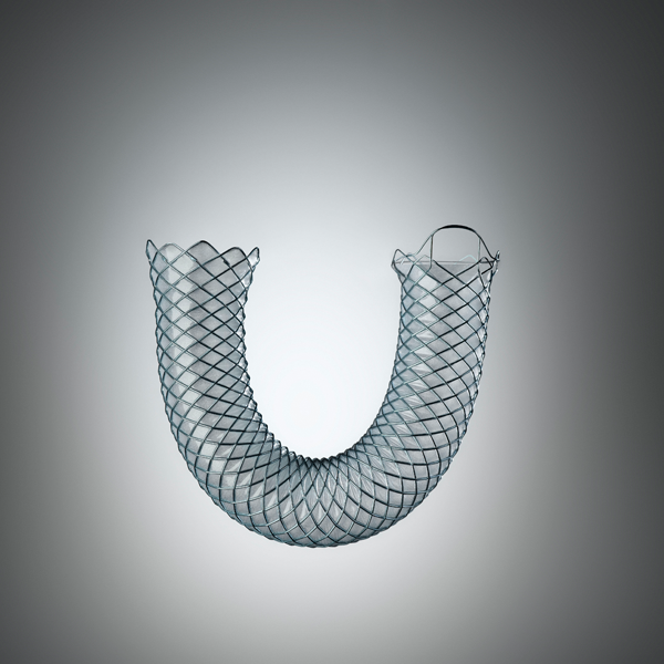 WallFlex Biliary Fully Covered STent