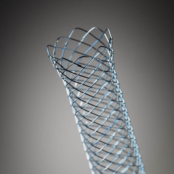 WallFlex Uncovered Stent