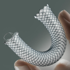 WallFlex Biliary Transhepatic Stent System