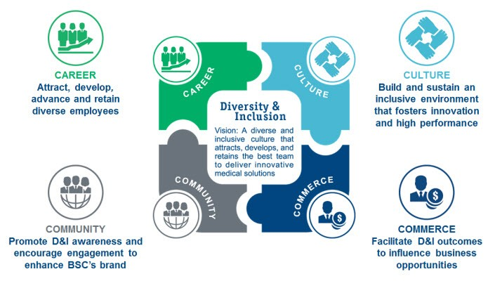 Diversity and Inclusion vision and strategy.
