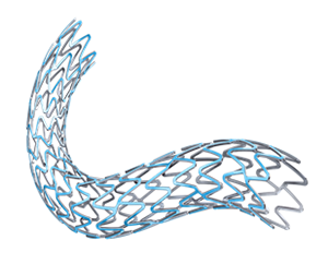 SYNERGY Coronary Stent System