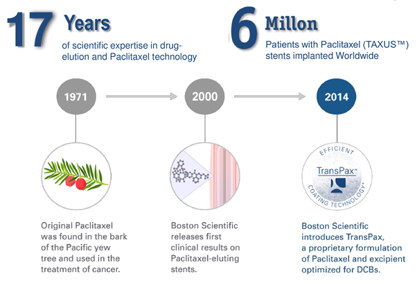 History for Paclitaxel on cardiovascular space