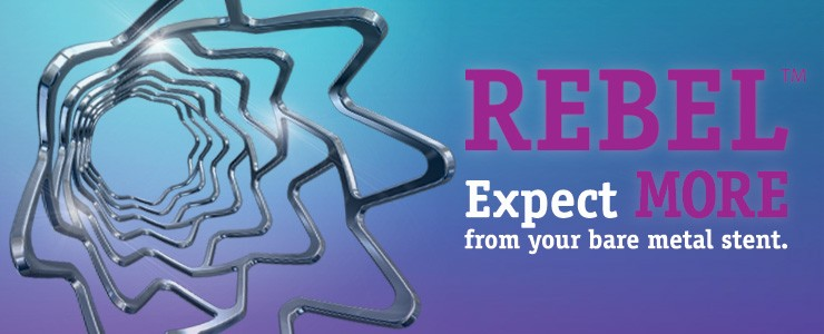 REBEL™ Expect more from your bare metal stent.