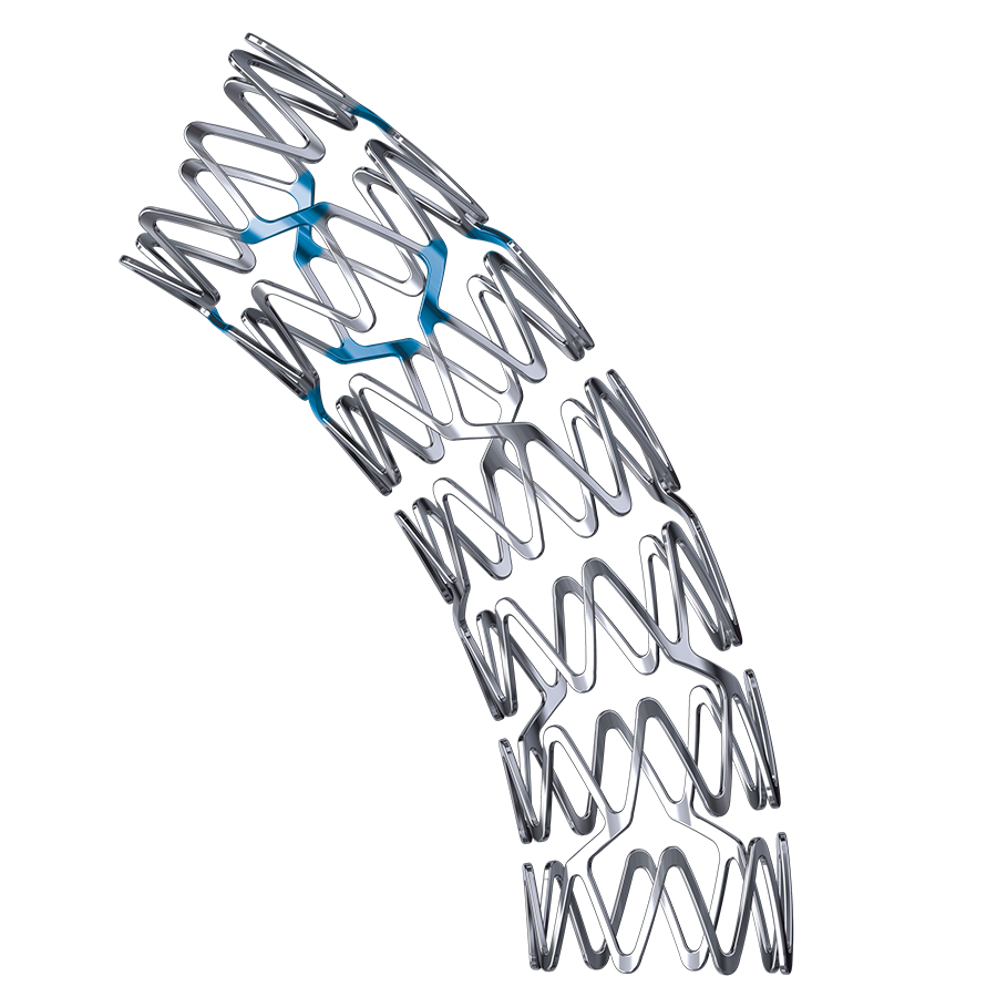 REBEL™ Platinum Chromium Coronary Stent