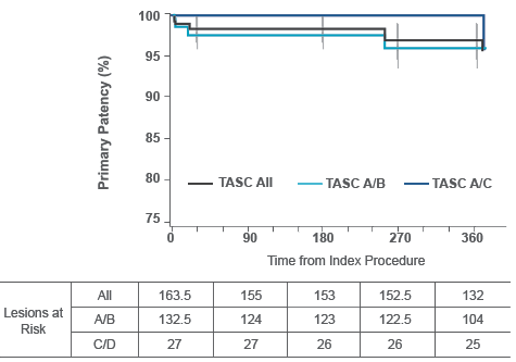 chart:12-month primary patency at TASC classification