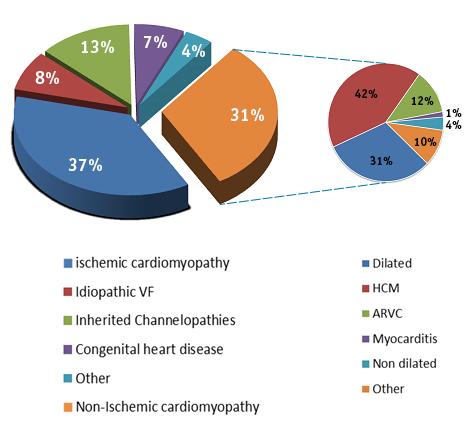 Demographics of EFFORTLESS study population