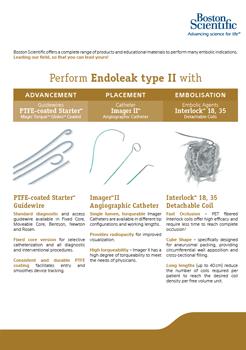 Endoleak type II: Seel Sheet