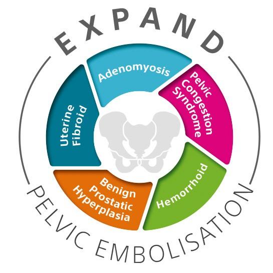 Expand Pelvic Embolisation