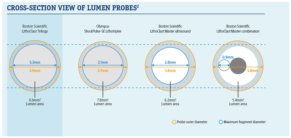 Cross-Section View of Lumen Probes. 2