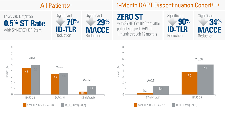 Safety and Primary Endpoint Data at 1 Year