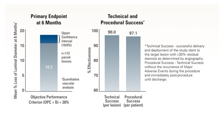 MELODIE Trial Primary Endpoint and Success