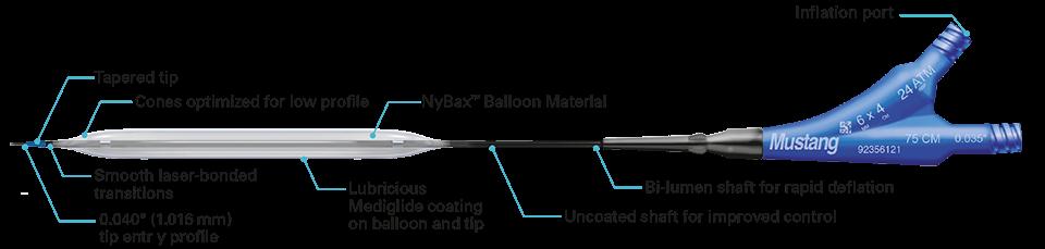 schematic overview