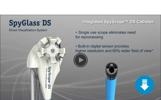 SpyGlass DS Animation