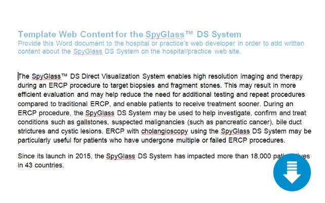Template Web Content for the SpyGlass™ DS System