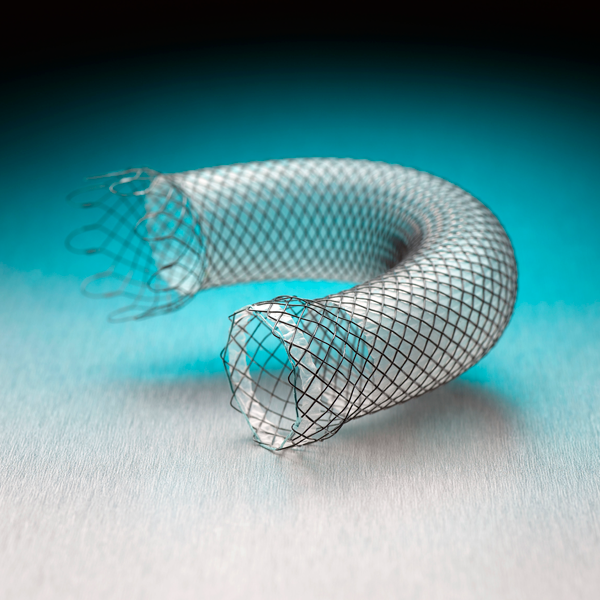 Wallflex Esophageal Stent (partially covered)
