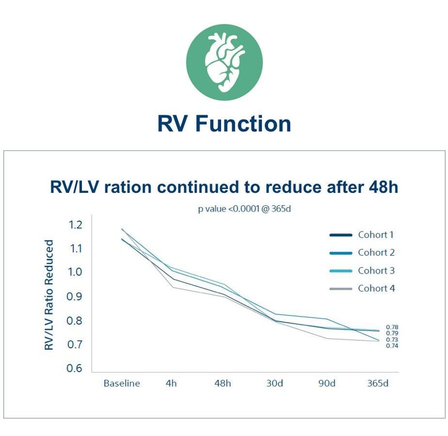RV/LV ration continued to reduce after 48h graph
