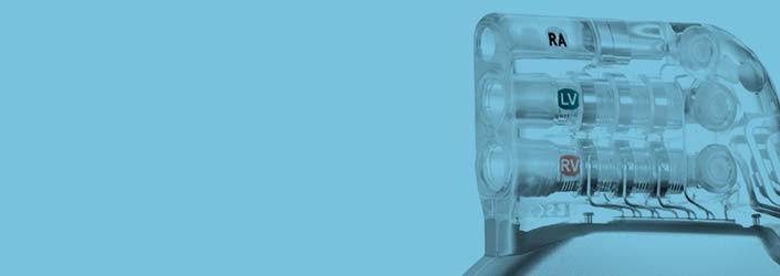 Boston Scientific CRT Device