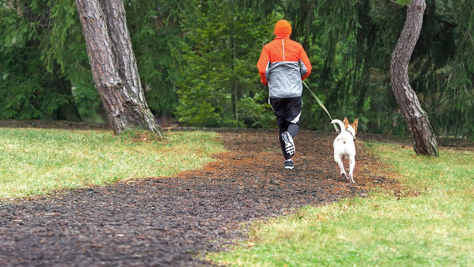 Person Jogging in Park with Dog