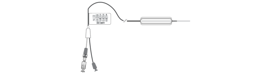 CRE Single-Use Wireguided Esophageal / Pyloric Balloon Dilators