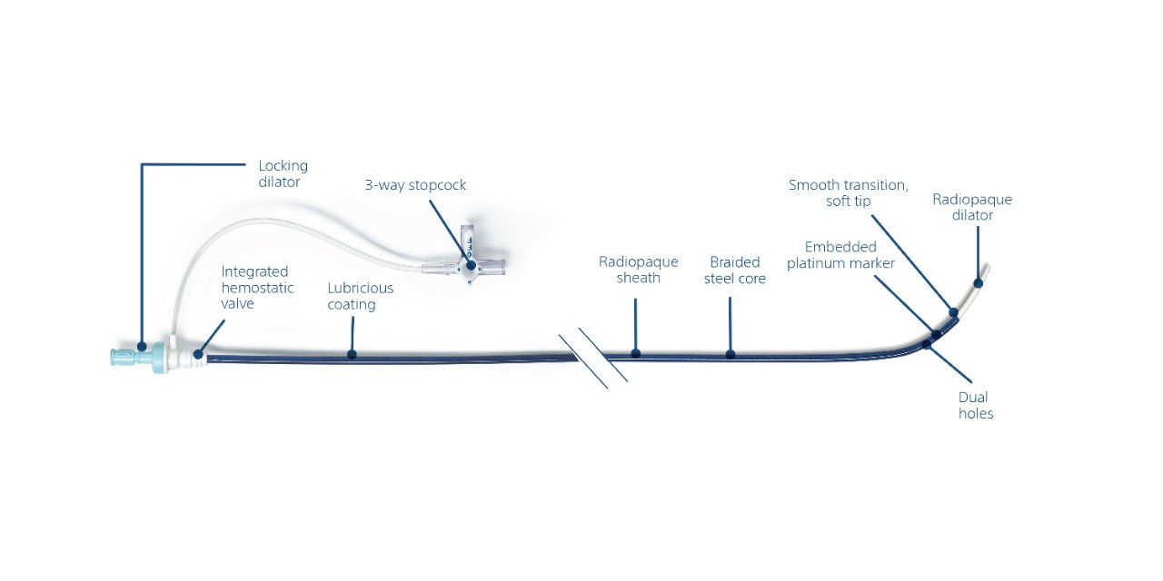 Schematic showing key elements of the TSX transseptal delivery system