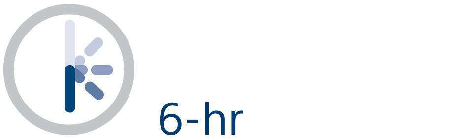 Clock icon representing 6 hours.
