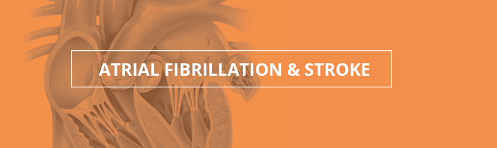 Atrial Fibrillation and Stroke