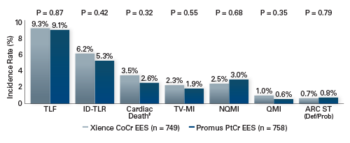 PLATINUM Workhorse 5-year Clinical Results