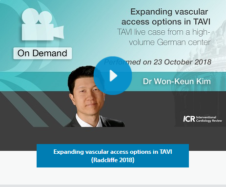 Expanding vascular access options in TAVI (Radcliffe 2018)
