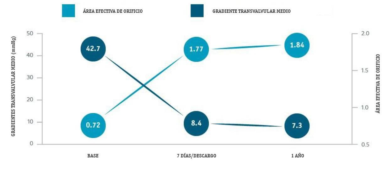 SAVI-TF Results Summary